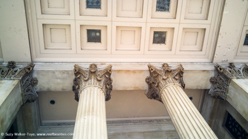 Tops of National Gallery Columns (Outside)