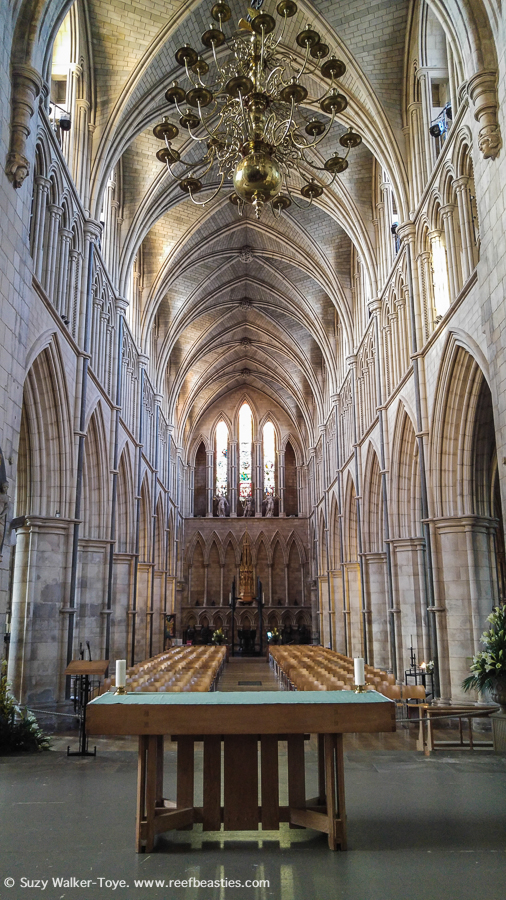 This view is from standing at the back of the crossing (by the choir), showing the crossing and nave. We can see the effect of the light pooring in through all the many pointed windows in the nave and illuminating the vaulted ceiling. At the back you can see the western pointed arched stained glass windows and blind windows.
