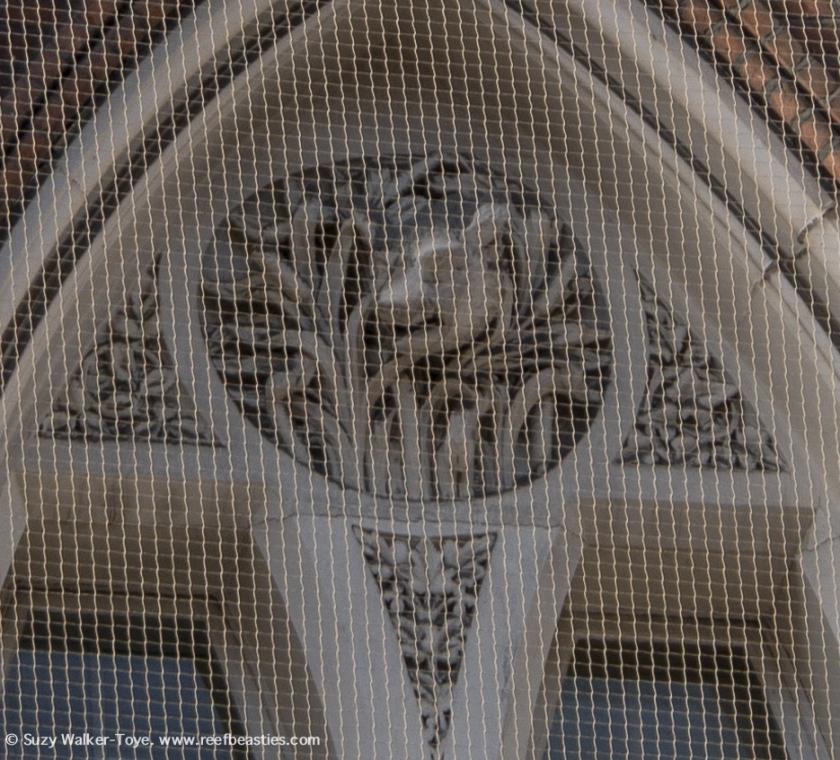 EastCheap Gothic - Boar detail